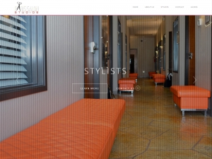 Website Visual - Paris Salon Studios